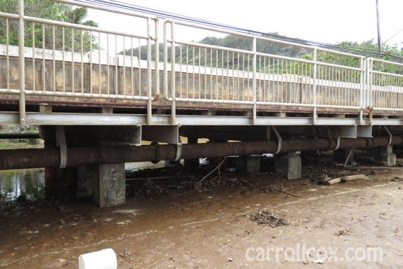 21d113a689 THE CARROLL COX SHOW - Paumalu Bridge